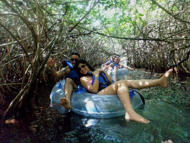 xel ha manglares