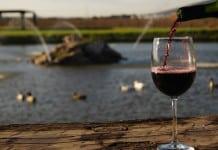 Viñedos de Querétaro, ruta del vino