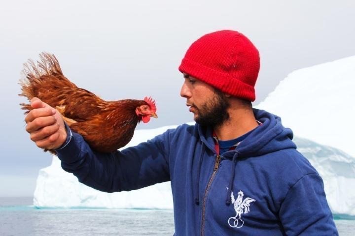 Guirec Soudée con su gallina. Foto_ Voiles