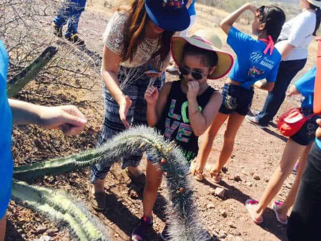 estero del soldado cactus