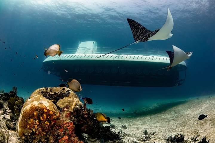 Price travel Foto: Atlantis Cozumel