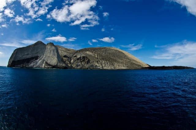 Islas Revillagigedo 08