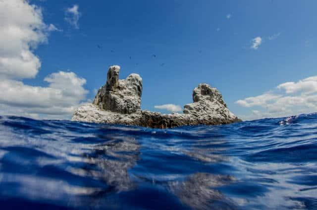 Islas Revillagigedo 13