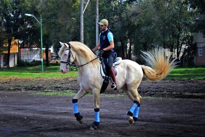Los-mejores-actos-Festival-Internacional-del-Caballo-Lusitano-en-Querétaro-Foto-El-Sol-2