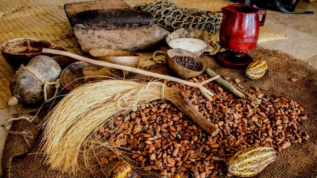 Cacao al chocolate tabasco en mty