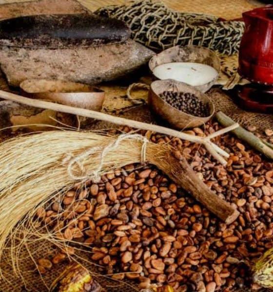 Festival del Cacao al Chocolate en Monterrey. Semillas de cacao. Imagen. Archivo