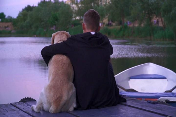 Video boat dog. Foto Storyblocks.