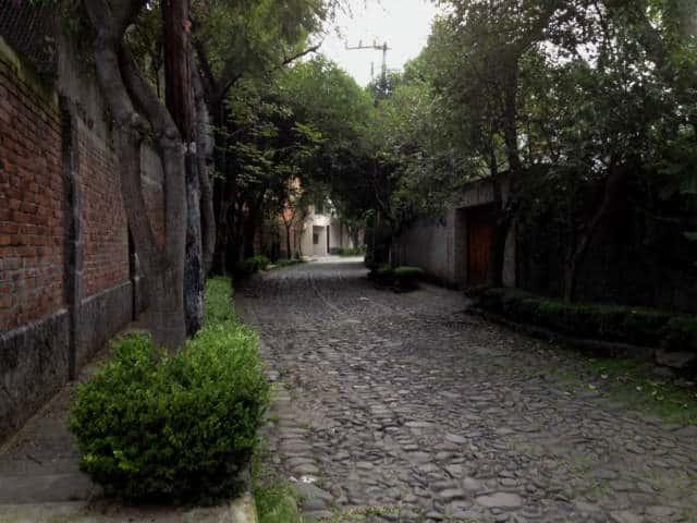 calle Rio Magdalena cdmx 11