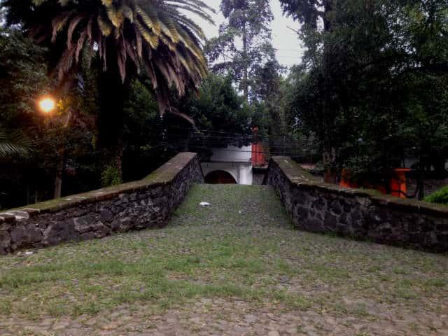 calle Rio Magdalena cdmx 12