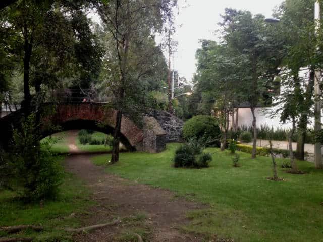 calle Rio Magdalena cdmx 13