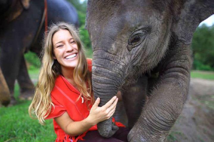 El souvenir Foto: Video bebé elefante abrazable en Tailandia