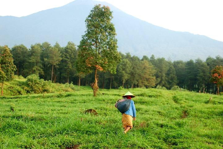 Qué hacer en Borobudur Indonesia. Foto Relajati Raihan
