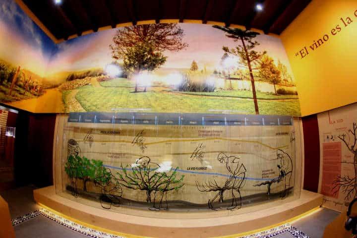 museo del vino guanajuato 01