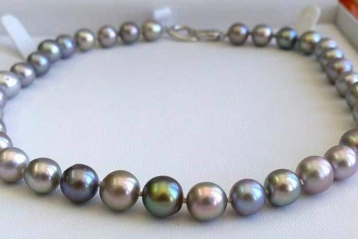 perlas-del-mar-de-cortez-09