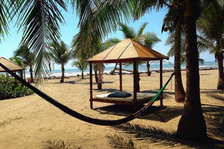 bambuddha-acapulco