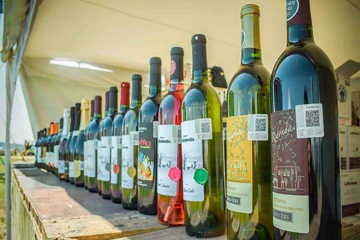 Festival 100 vinos mexicanos Foto: festival 100 vinos mexicanos en Puebla