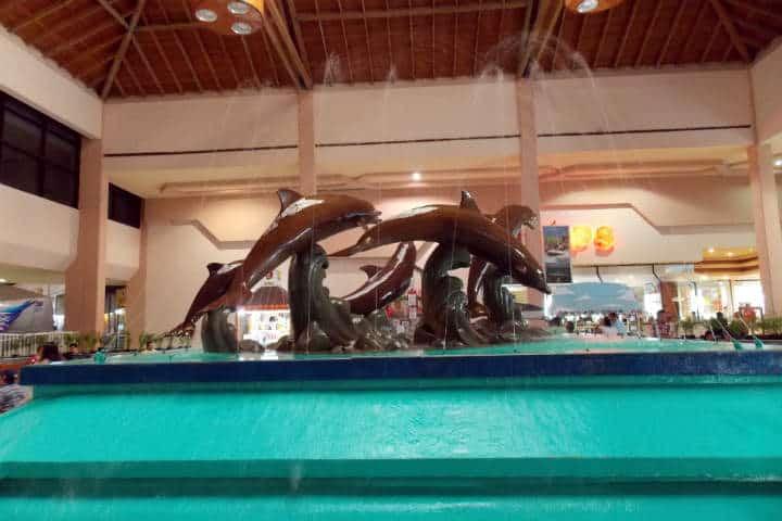 acuario-de-veracruz-16