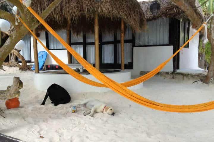 hamacas-yucatecas-christine-rondeau