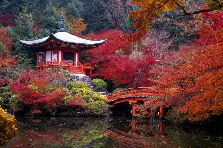 kioto-otono