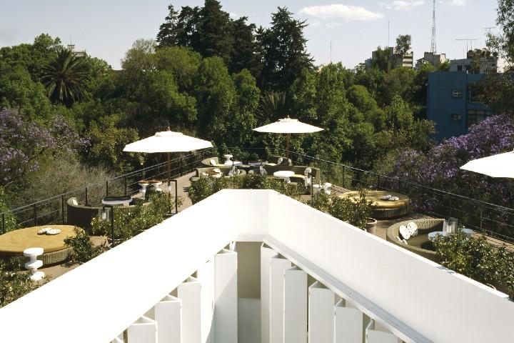 La-mejor-de-las-vistas-5-hoteles-petfriendly-en-mexico-foto-design-hoteles-2