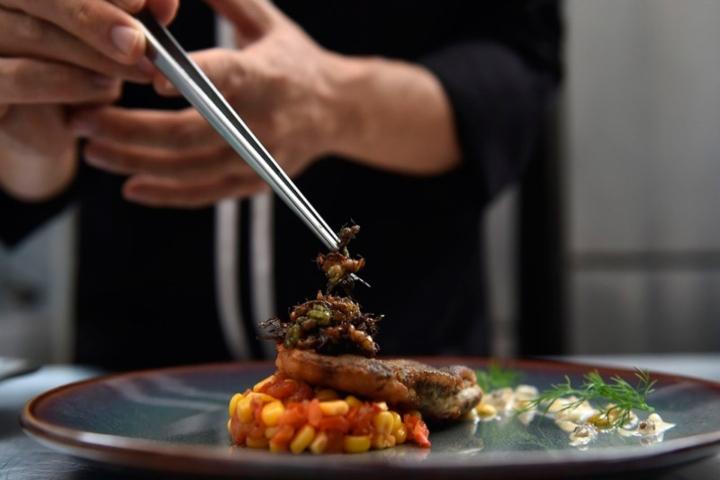 Comer-insectos-una-tendencia-gourmet-que-crece-en-Europa-y-se-acerca-cada-vez-más-a-Argentina