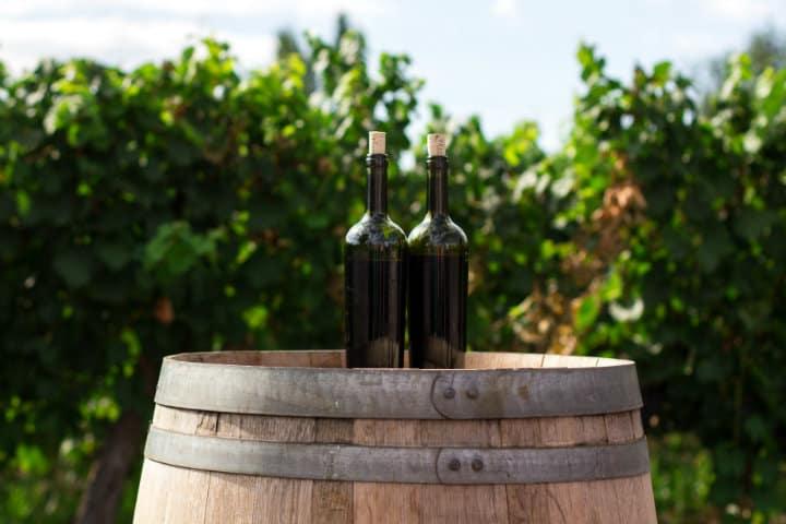 Inicia conmigo esta Ruta del vino con Club Premier Foto Rodrigo Abreu