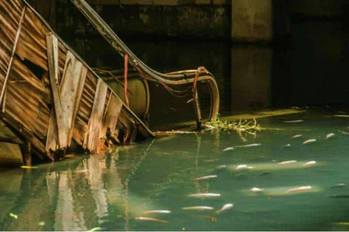 La inundación se convirtió en estanque Foto John Melic