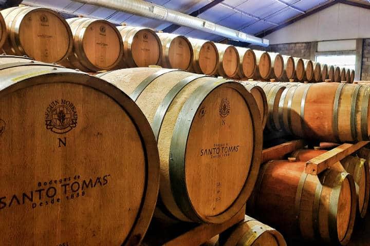 Las barricas en Miramar nos acompañaban mientras degustábamos delicioso vino de la región Foto Bodegas Santo Tomás