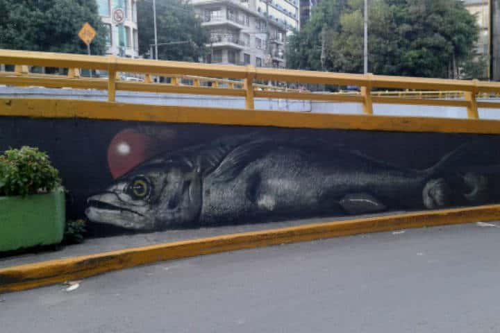 arte-urbano-cdmx-lieja