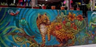 arte-urbano-cdmx