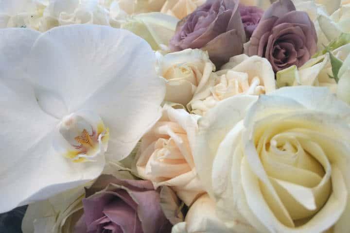 Retiro Floral CDMX 13