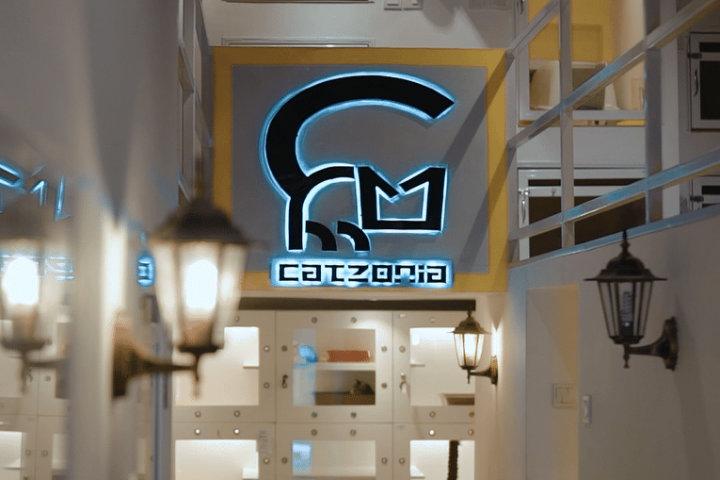 Conoce el Hotel Catzonia exclusivo para gatos.Foto.Catzonia.1