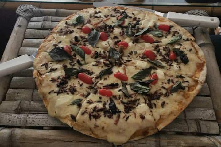 La pizza de insectos, Fin de semana en la ciudad de Tlaxcala. Foto: Archivo