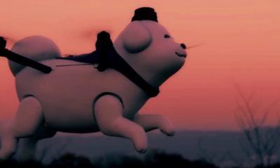 portada yukimaru perro dron japon 01