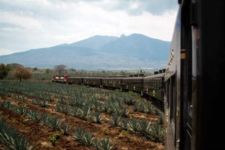 Tren de José Cuervo express