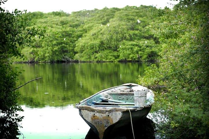 la barca jalisco