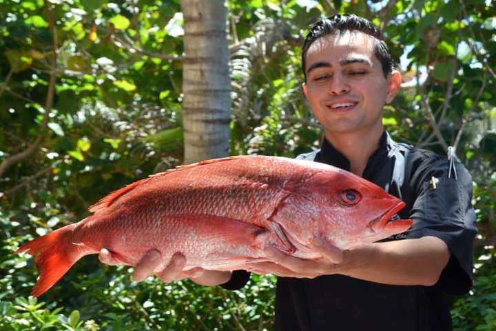 pescados_punta_mita_nayarit