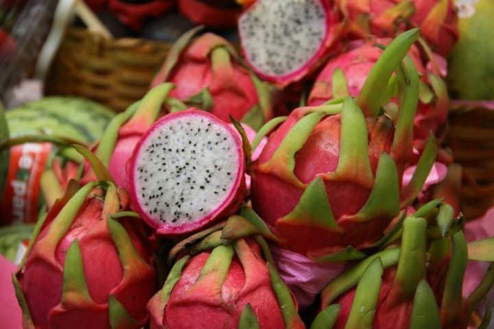 pitaya paulo godoy