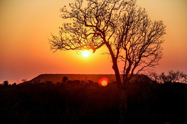 La hermosa Madagascar. Foto: 2229018
