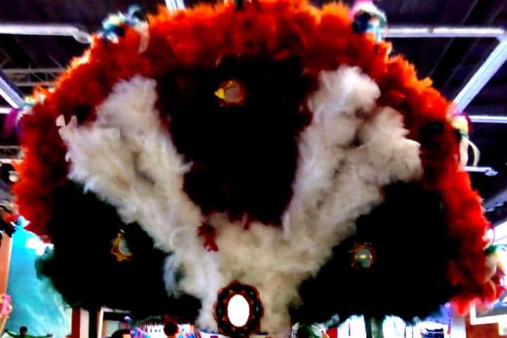 Oaxaca – Penacho de plumas