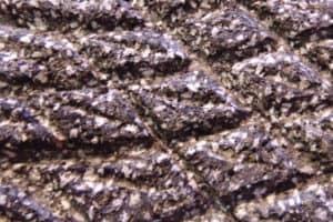 San Luis Potosì - Detalle de la piedra del metate