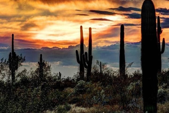 Año nuevo de los Seris en Sonora
