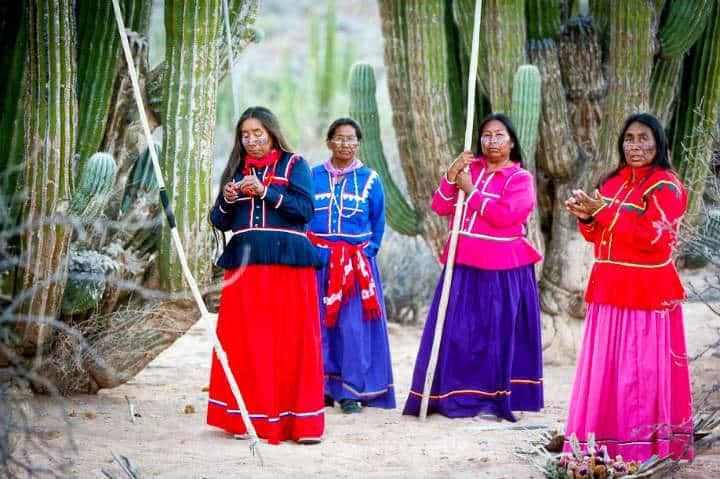 Grupo Indigena Seri