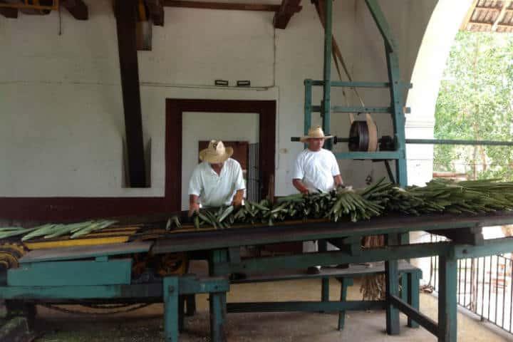 haciendas yucatecas sotuta 05