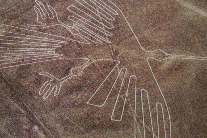Líneas de Nazca. Ave. Foto Archivo