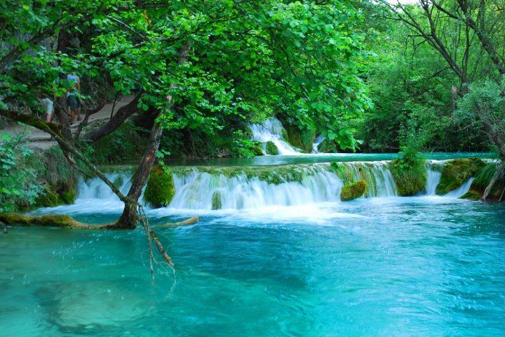 Cascadas de Plitvice. Foto_ cabra con disfraz degato