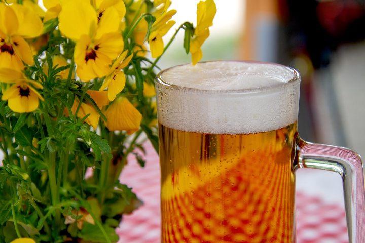 Índice Internacional de Cerveza 2017. Foto Pixabay.