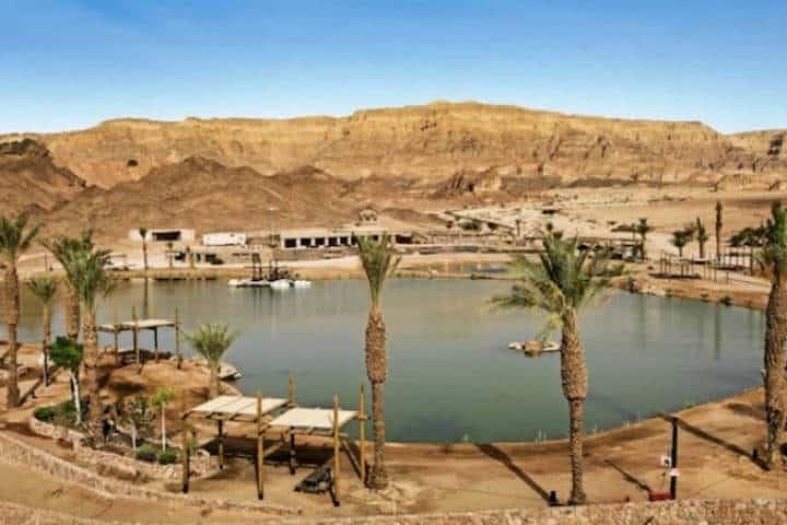 Desierto Negev. Imagen: Israel. Archivo