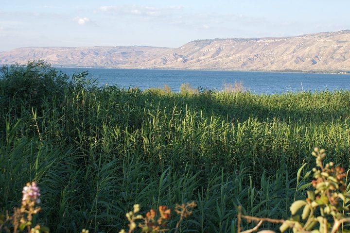 Mar de Galilea, Israel. Foto Isa Mau.