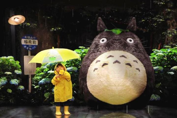 Mi Vecino Totoro. Foto Pinterest.